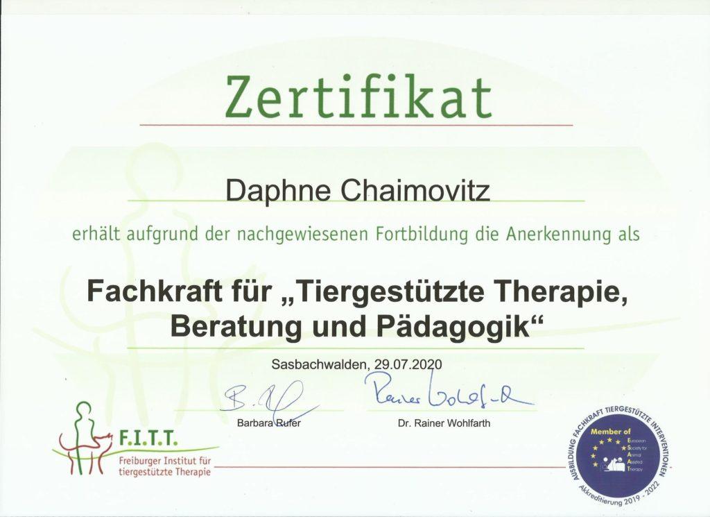 """Bild des Zertifikat Fachkraft für """"Tiergestützte Therapie, Bildung und Pädagogik"""""""